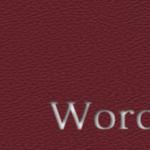 WordPress4.0にしてみたら投稿画面のタグが全て見えなくなった